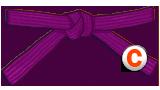 Purple Belt Candidate